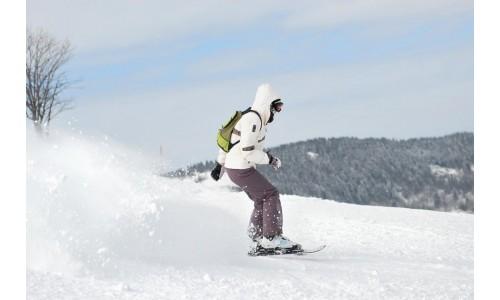 Mini-skis